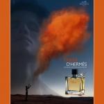 10 lat Terre d'Hermes: Fakty i Ciekawostki