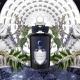 Selena i Endymion: romantyczna historia w nowych perfumach Penhaligon's