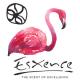 ESXENCE 2017: Najlepsze perfumy!