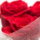 Przegląd najnowszych perfum z nutą róży