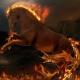 Recenzje perfum niszowych #26: Parfums de Marly Pegasus