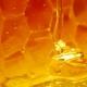 Recenzje perfum niszowych #27: Ginestet Botrytis